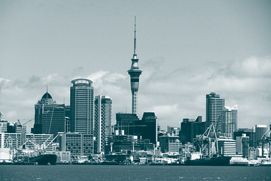 auckland-contact